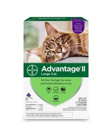 Advantage II Large Cat, 6 Pack