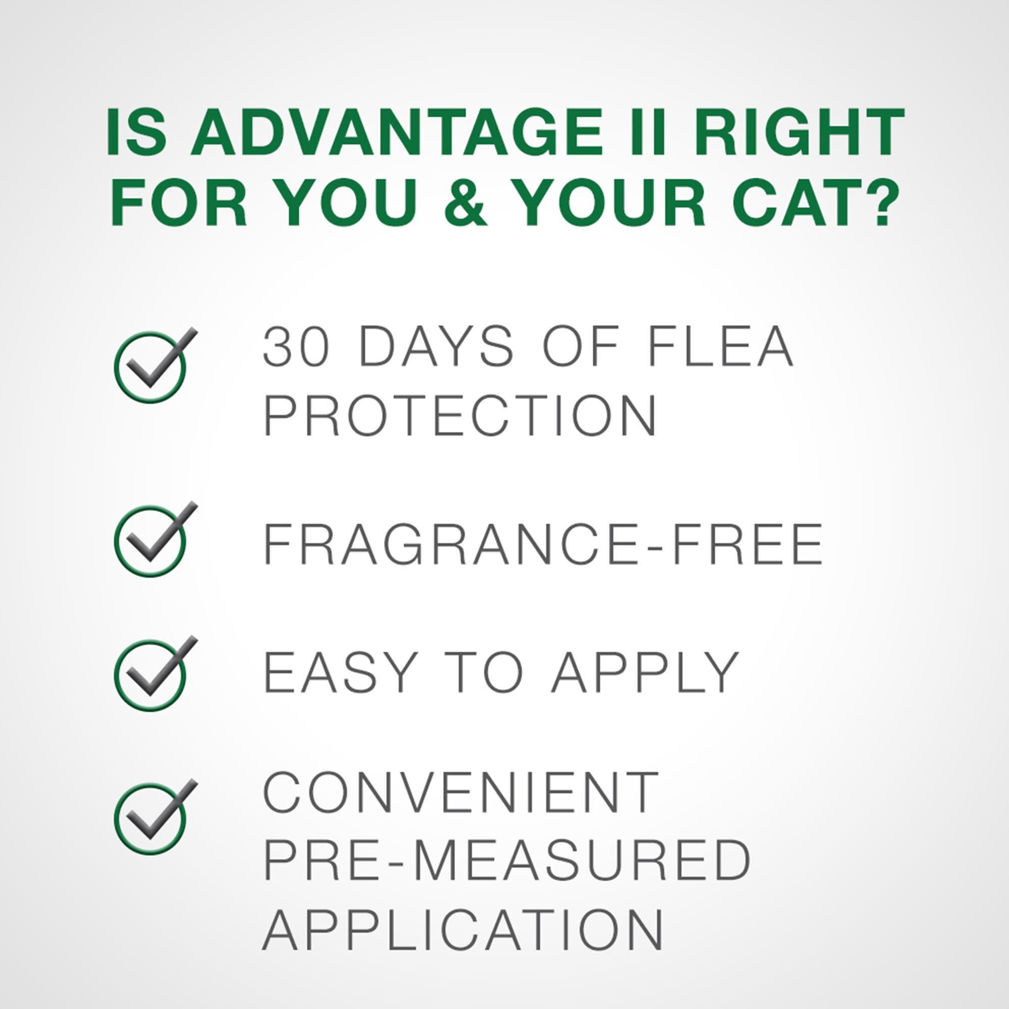 Advantage (Bayer) Advantage II Large Cat 2 Pack