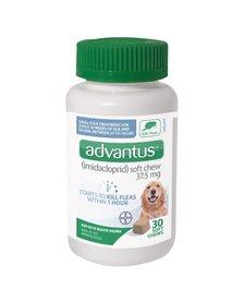 Advantus 37.5mg Large Dog 23-110 lb 30 ct