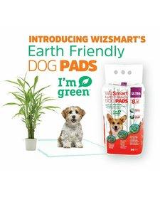 WizSmart Earth Friendly Ultra Pads 30ct