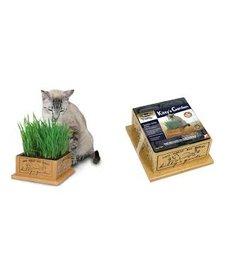 Pioneer Pet Kitty's Garden