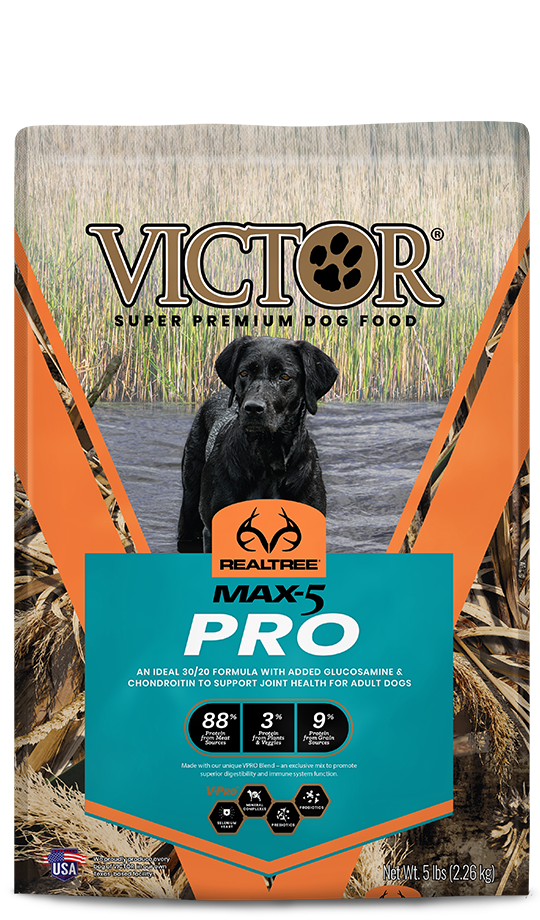 Victor Victor Realtree Max  40 lb