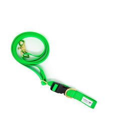 Lucky + Dog Adjustable Leash Green Apple