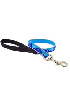 Lupine Blue Paws Leash 3/4""