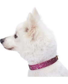 Glam Collar Pink-Extra Small
