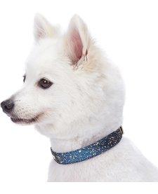 Glam Collar Blue-Small