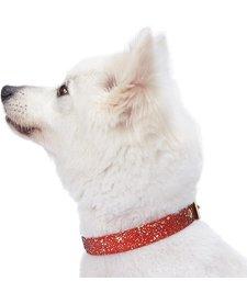 Glam Collar Red-Medium