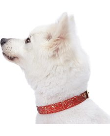 Glam Collar Red-Small
