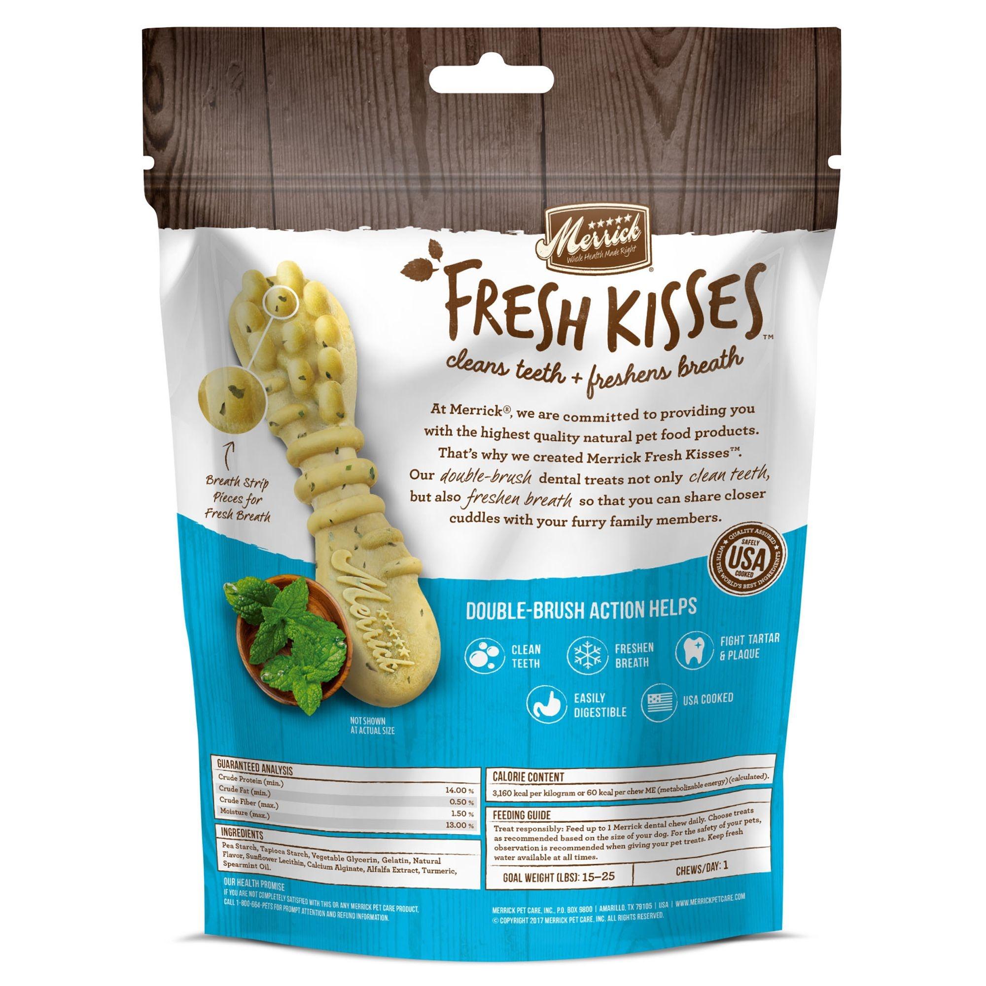 Merrick Fresh Kisses Mint Strips Brush 5.5 oz SM
