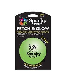 Spunky Pup Fetch & Chew LG