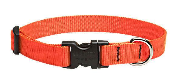 "Lupine Lupine Basics Orange Collar 9""-14"""