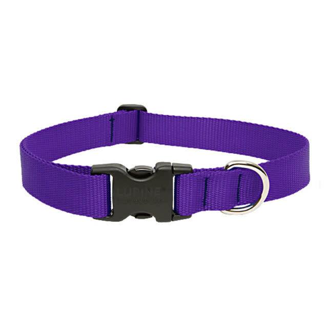 "Lupine Lupine Basics Purple Collar 10""-16"""