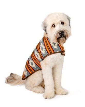 Chilly Dog Chilly Dog Denim Sunset Coat Small