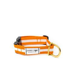 Lucky + Dog Everyday Collar The Longhorn LG