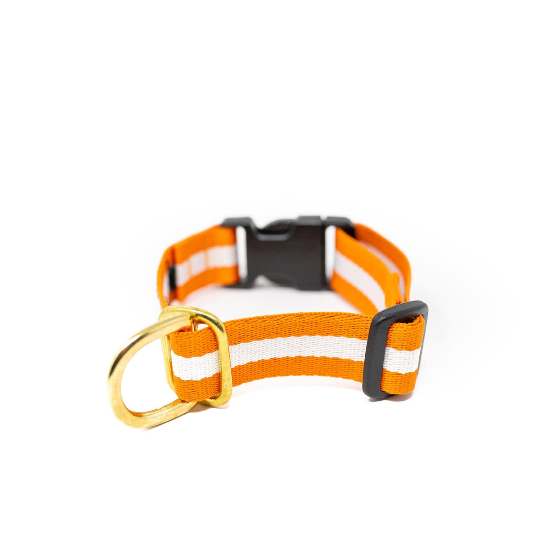 Lucky + Dog Lucky + Dog Everyday Collar The Longhorn LG