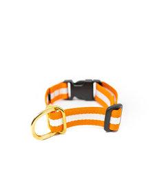 Lucky + Dog Everyday Collar The Longhorn MD