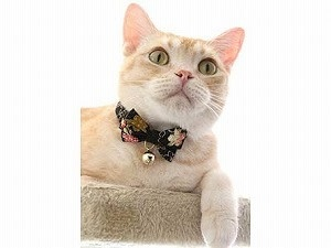 Necoichi Kimono Bow Tie Cat Collar Black