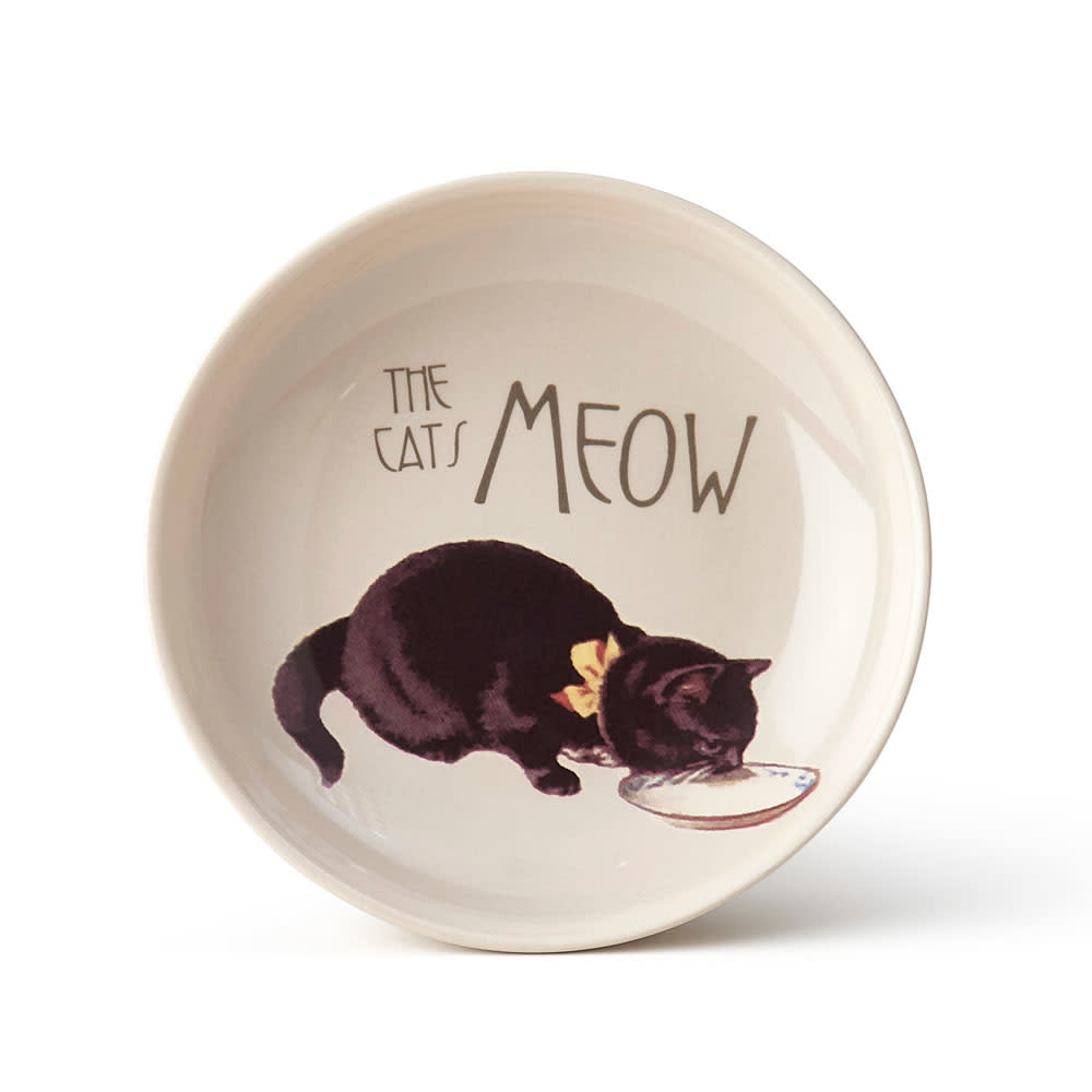 PetRageous Pet Derby Saucer
