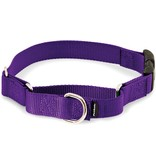 Petsafe- General Petsafe Martingale Collar Purple Petite