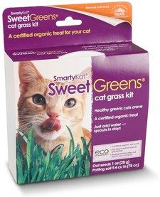 SmartyKat Sweet Greens Grow Kit