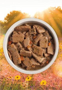 Acana (Champion) Acana Lamb Recipe 12.8 oz