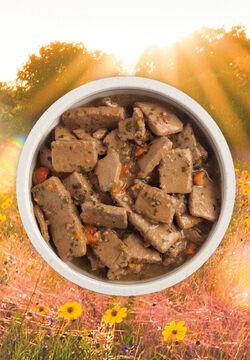Acana (Champion) Acana Beef Recipe 12.8 oz