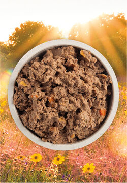 Acana (Champion) Acana Puppy Recipe 12.8 oz