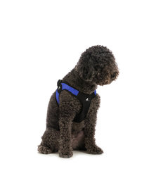 Gooby Easy Fit Harness
