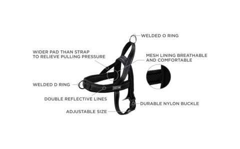 Lucky + Dog Lucky + Dog Quick Fit Harness Red LG