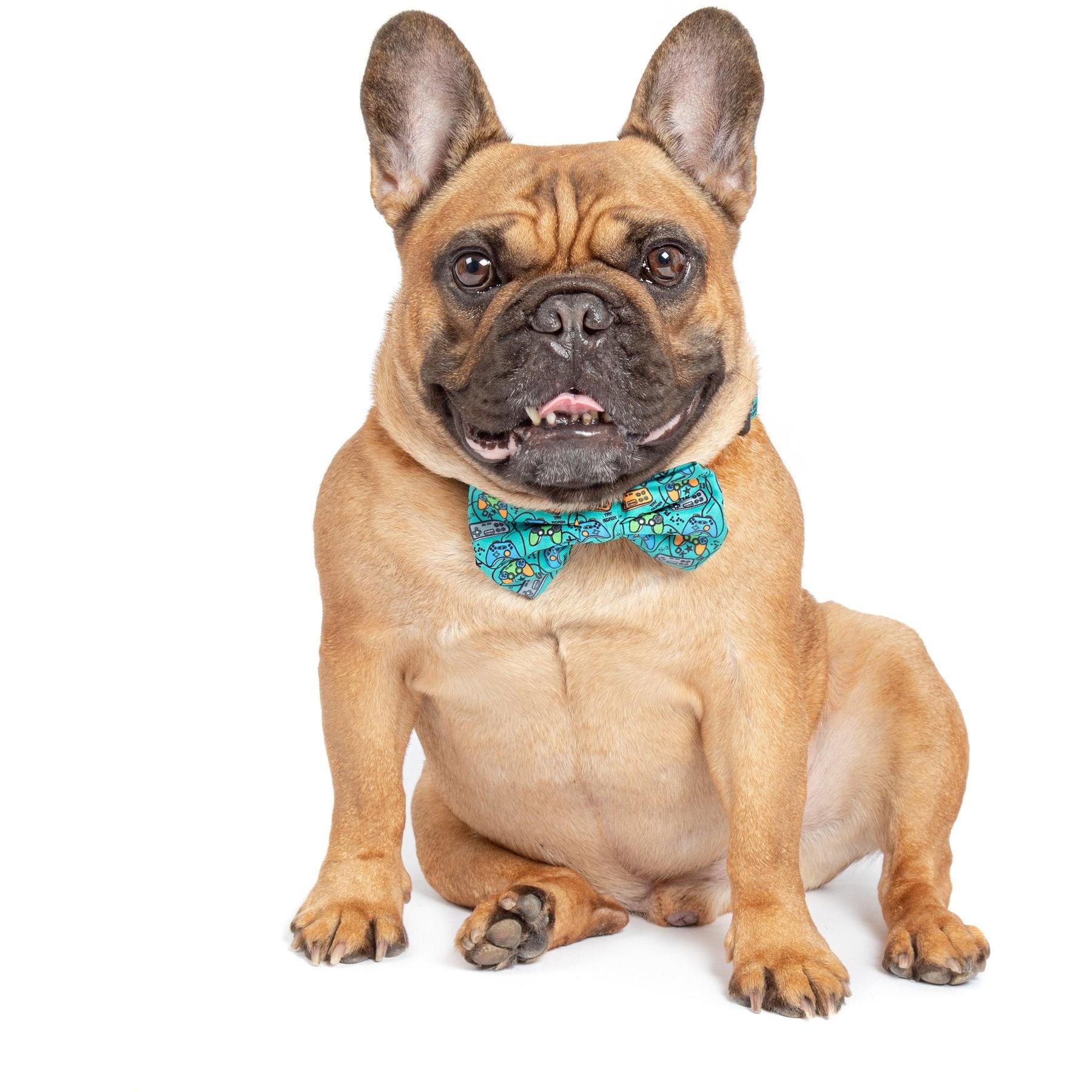 Big and Little Dogs Big and Little Dogs Dog Collar & Bow Tie