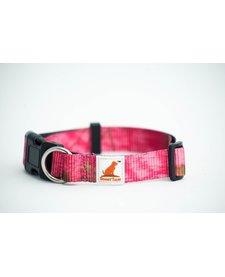 Doggy Tales Collar