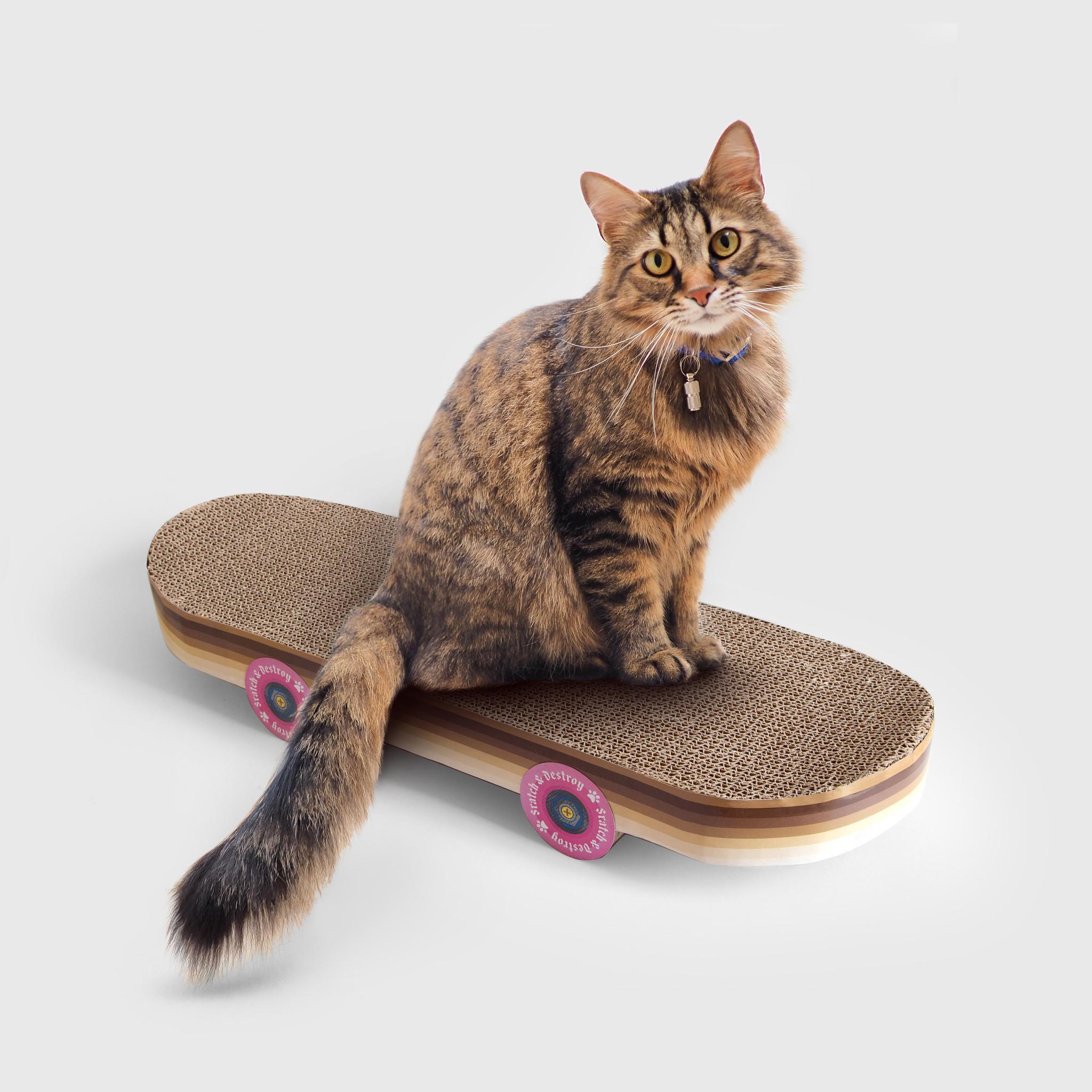 Suck UK Suck UK Cat Scratch Skateboard