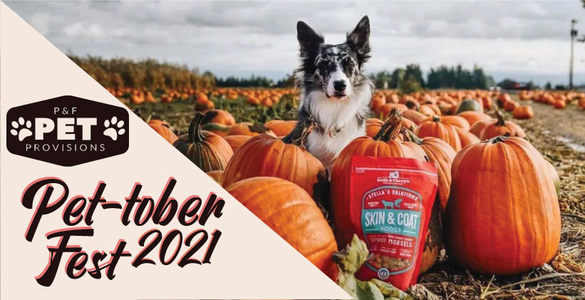 Stella & Chewy's at Pet-tober Fest 2021
