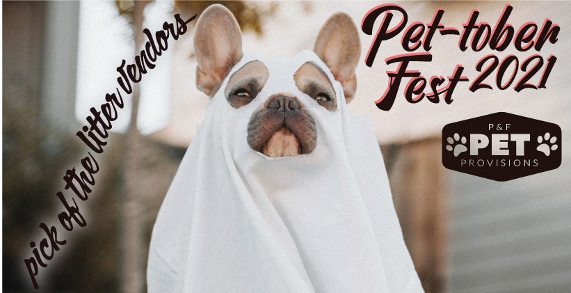 Meet Our Spectacular Vendors for Pet-tober Fest 2021