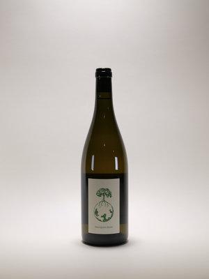 Weingut Werlitsch, Sauvignon Opok, 2016 750 ml