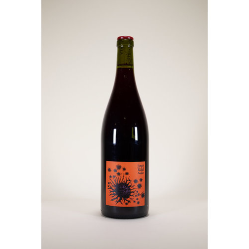 Romuald Valot, Beaujolais Village, 2019, 750ml