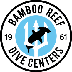 Bamboo Reef Dive Centers