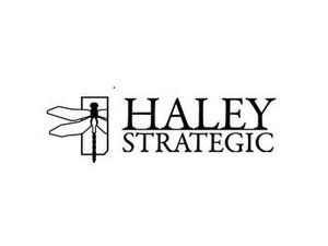 HALEY STRATEGIC PARTNERS