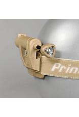 PRINCETON TEC MPLS CHARGE