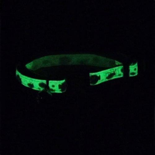 Coastal Collar SafeCat ® Glow in the Dark Breakaway