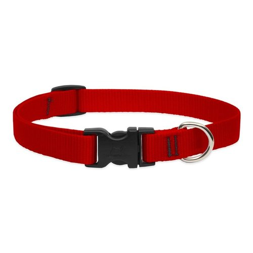 Lupine Pet Collar Basic Solid