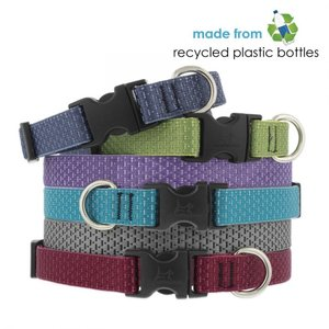 Lupine Pet Collar Eco