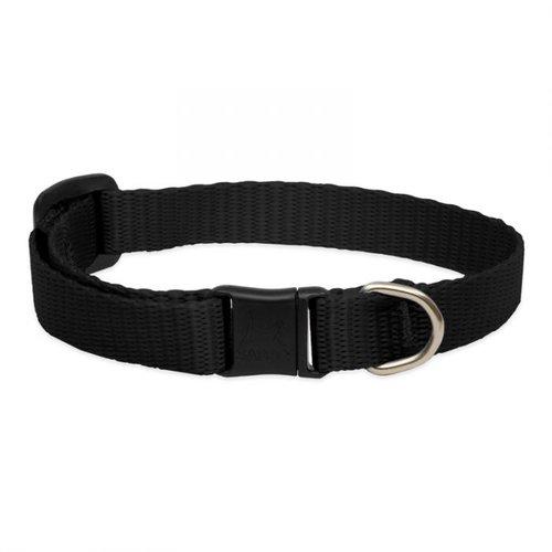Lupine Pet Collar Basic Solids