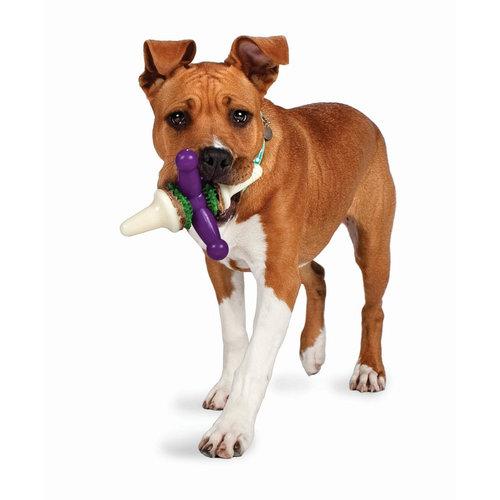 Pet Safe Juguete Bussy Buddy