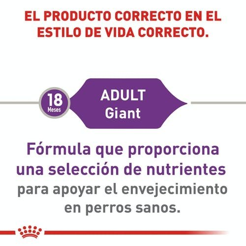 Royal Canin Canine Adult Giant 14 kg