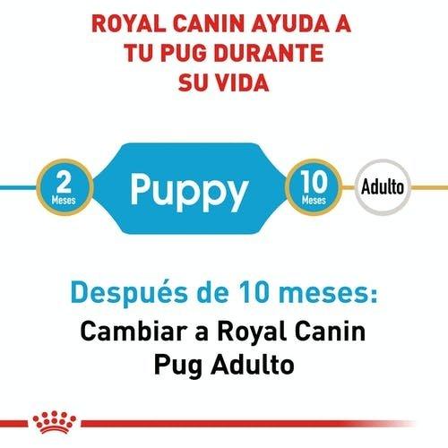 Royal Canin Canine BHN Pug Puppy 1.13 kg