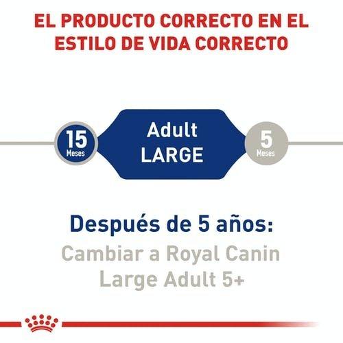 Royal Canin Canine Maxi Adulto (TE)