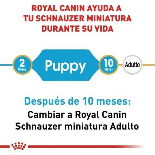 Royal Canin Canine BHN Miniatura Schnauzer Puppy 1.13 kg