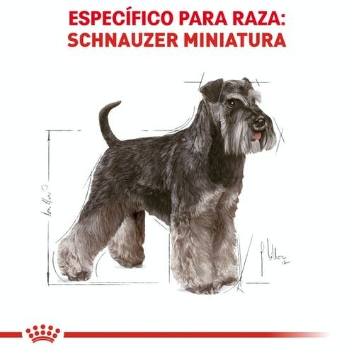 Royal Canin Canine BHN Miniatura Schnauzer Adulto 4.54 kg