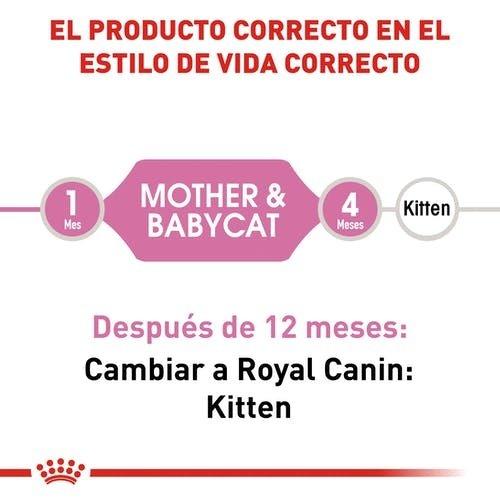 Royal Canin Feline Mother Babycat 1.5 kg (TE)